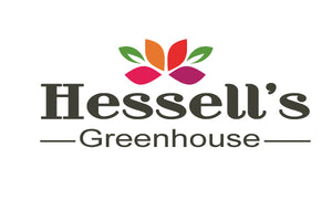 Hessell's Greenhouse