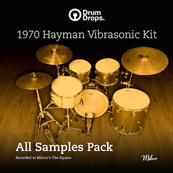 1970s Hayman Vibrasonic Kit