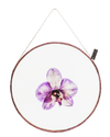 ORCHID ROUND (LARGE)