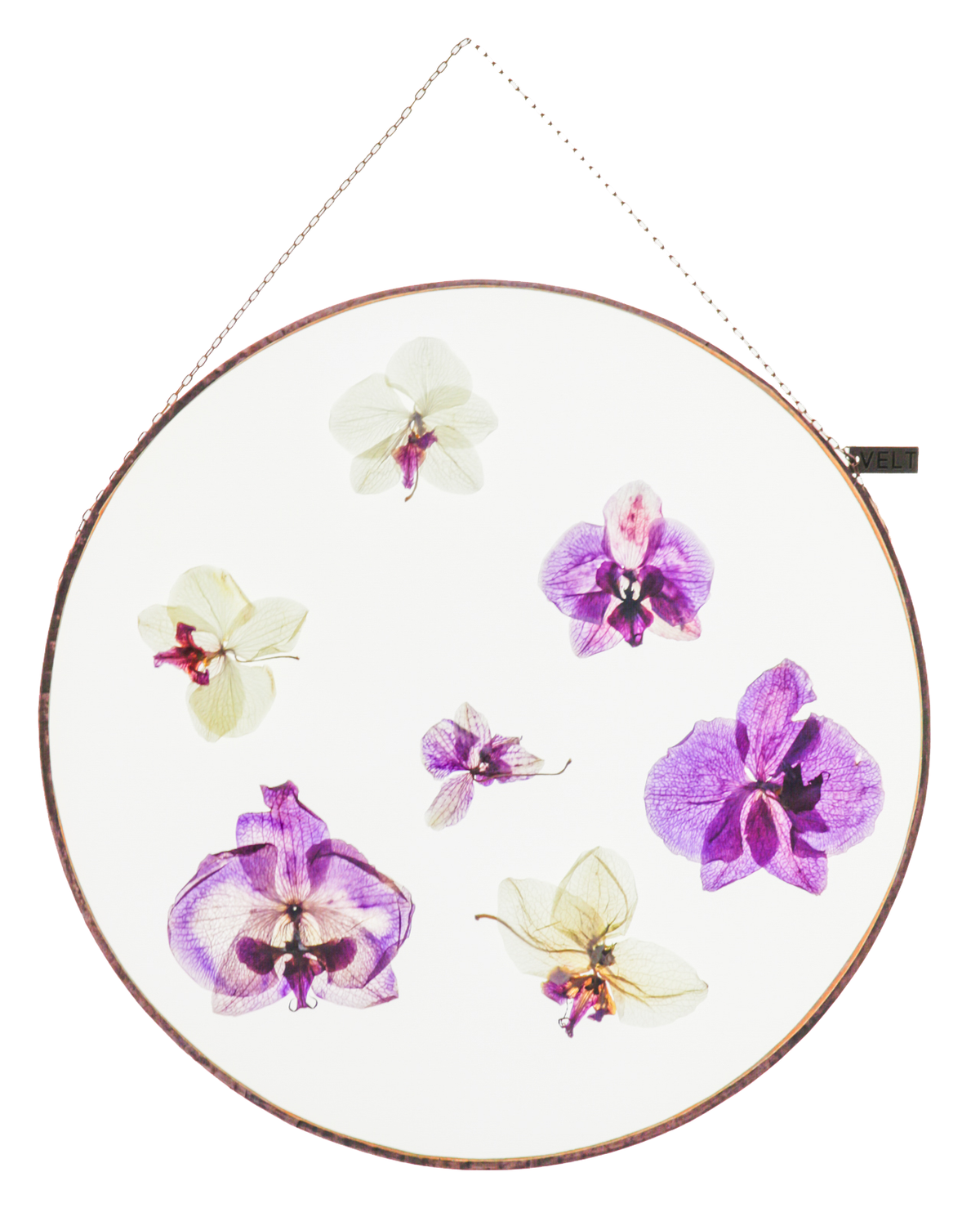 ORCHID ROUND (XL)