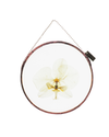 ORCHID ROUND (SMALL)