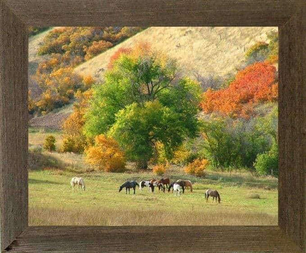 1.5 Wide Narrow Barnwood Frame 10 x 13 Size - Picture - Shop - Rustic Wooden