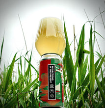 Load image into Gallery viewer, Wylam - Reflections in the Present - 4.9% mixed ferm saison 440ml can