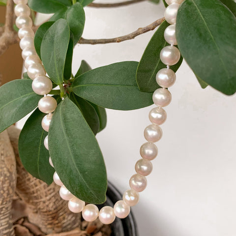 White fresh water pearl strand
