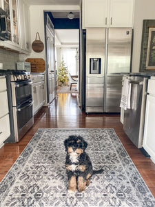 pet friendly kitchen floor mat