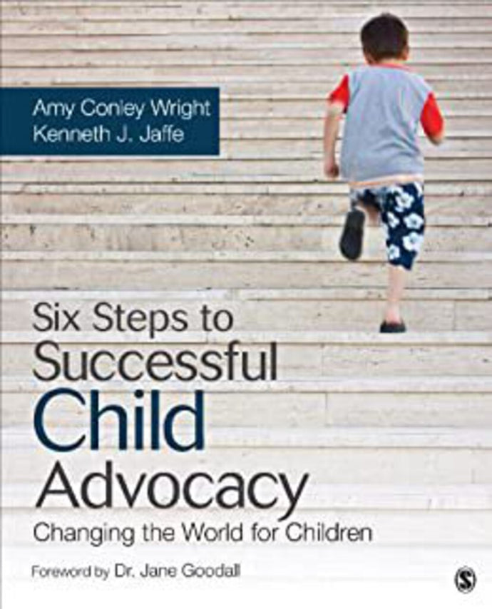 Six Steps To Successful Child Advocacy Changing 1st Edition by Amy Conley Wright and Kenneth J. Jaffe 9781452260945 (USED:GOOD)