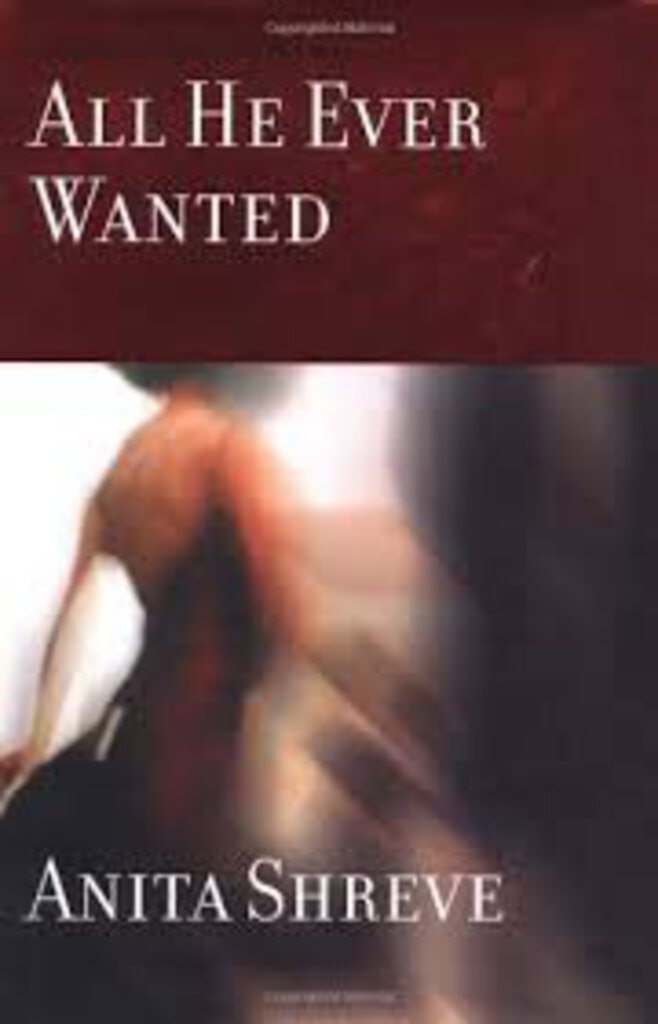 All he ever wanted by Anita Shreve 9780316782265 (USED:GOOD) *D13