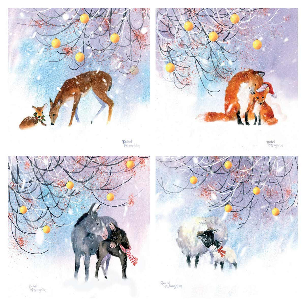 Traidcraft It's Cold Outside Christmas Cards