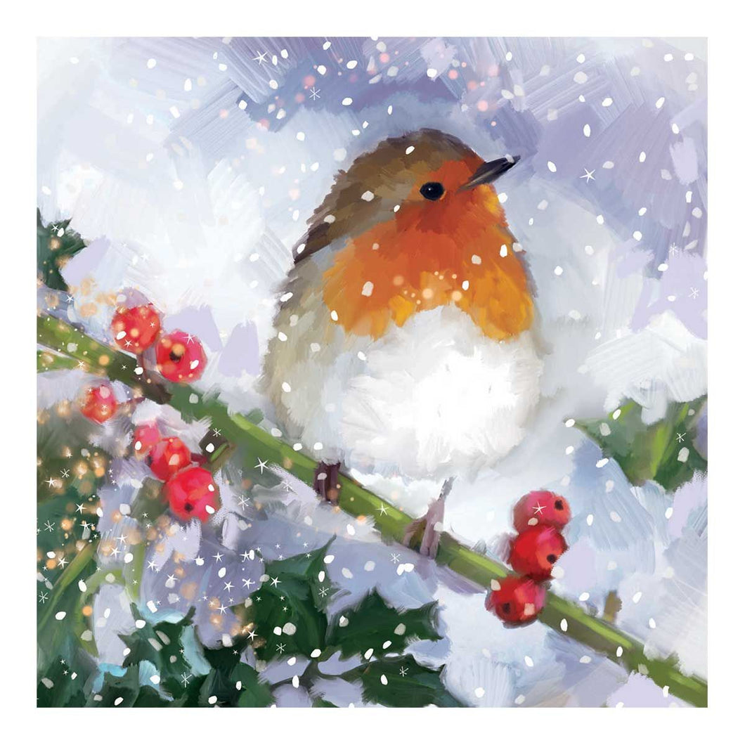 Traidcraft Festive Robin Christmas Cards