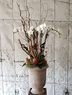 White orchid plant with botanic decorations