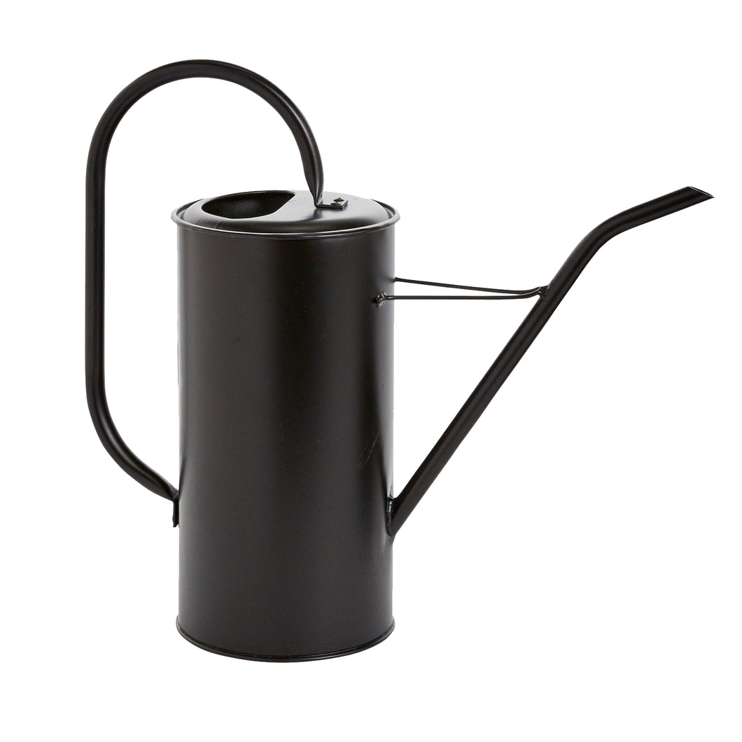 Black galvanized watering can