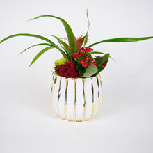 Load image into Gallery viewer, Single Red Bromeliad Arrangement