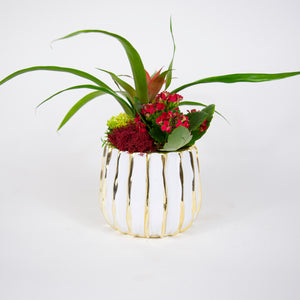 Single Red Bromeliad Arrangement