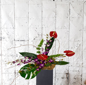 Floral arrangement including anthurium, dendrobium orchids, and kangaroo paw.