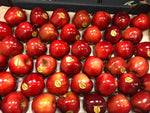 Red delicious apple kg