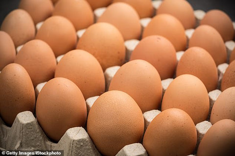 Lion Brand Eggs (1 doz)