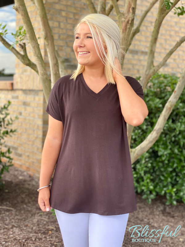 Brown V-Neck Short Sleeve Top