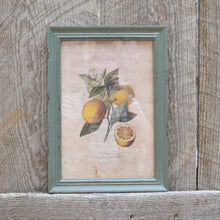 Load image into Gallery viewer, Citrus & Blossom Framed Prints