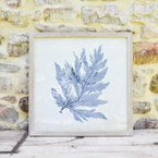 Blue Coral Watercolor Print