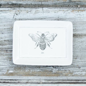 Rectangular Insect Dishes