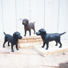 Load image into Gallery viewer, Cast Iron Labrador Retrievers