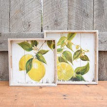 Load image into Gallery viewer, Lemon Print Trays