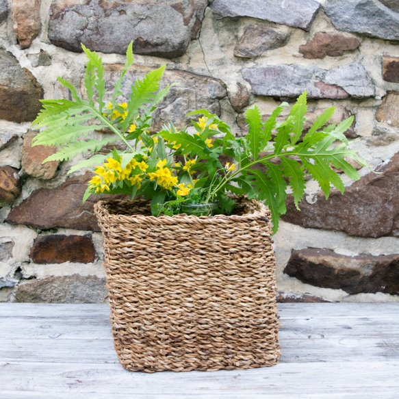 Seagrass Apple Basket