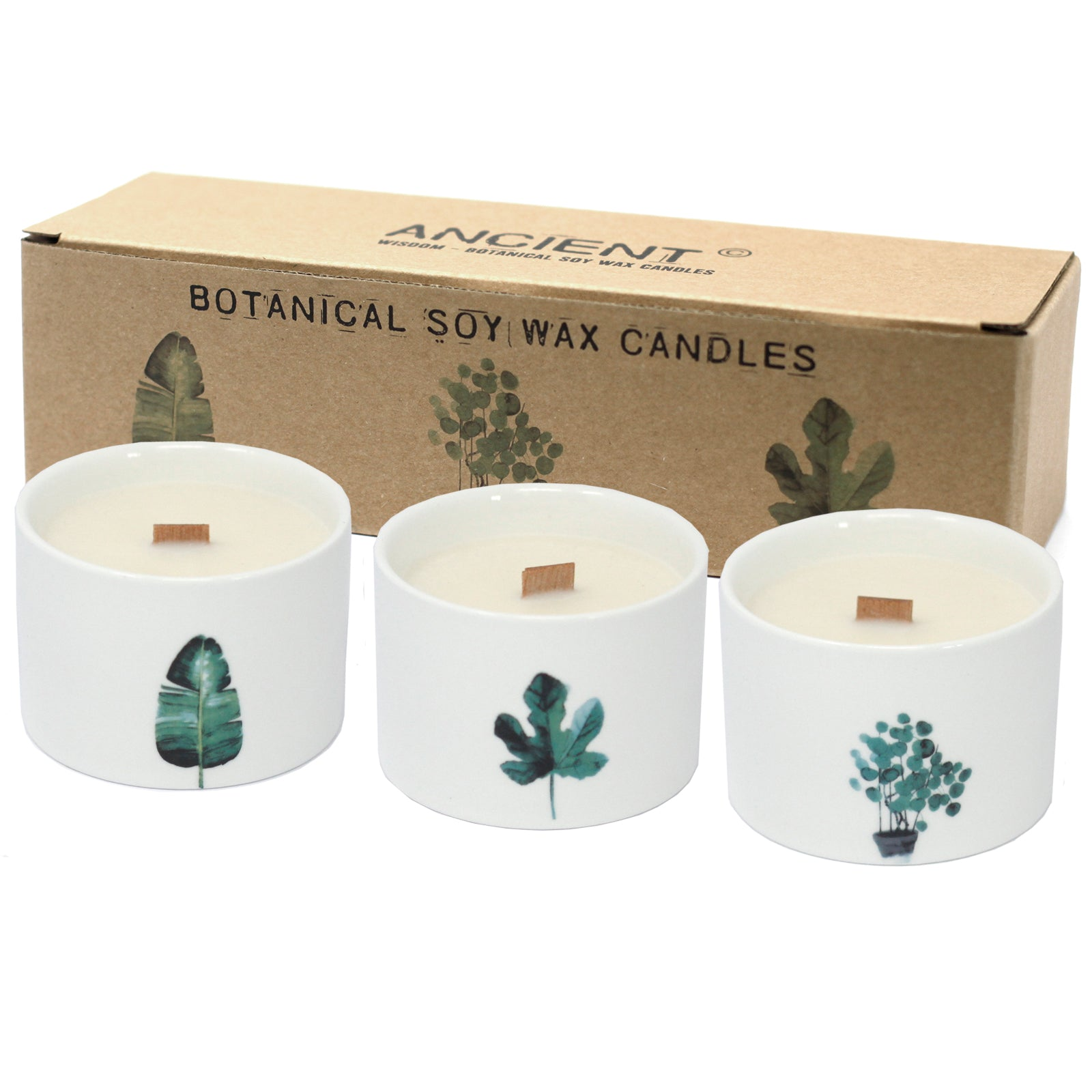 Pack of 3 Med Botanical Candles - Mullberry Harvest