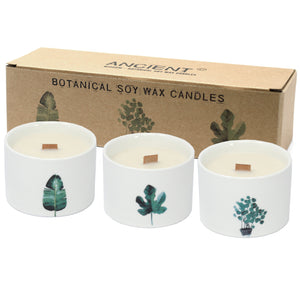 Pack of 3 Med Botanical Candles - Lemon Honeysuckle