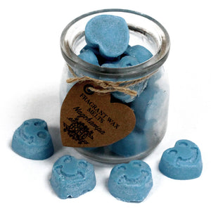 Soywax Melts Jar - Nagchampa