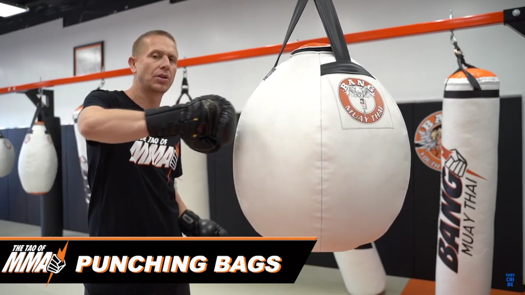 How To Utilize Different Punching Bags For MMA With Trevor Wittman