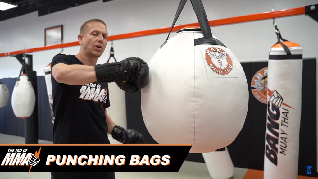 A Breakdown of the Importance of Punching Bags with Trevor Wittman
