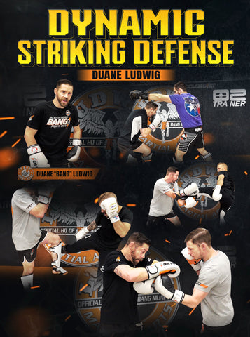 Dynamic Striking Defense by Duane Ludwig