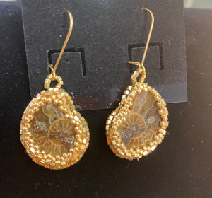 Ammonite Earrings by Amy Doty