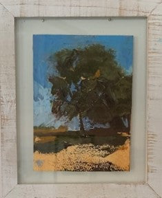 """Old Oak Tree"" Original Oil by Beverly Waite"
