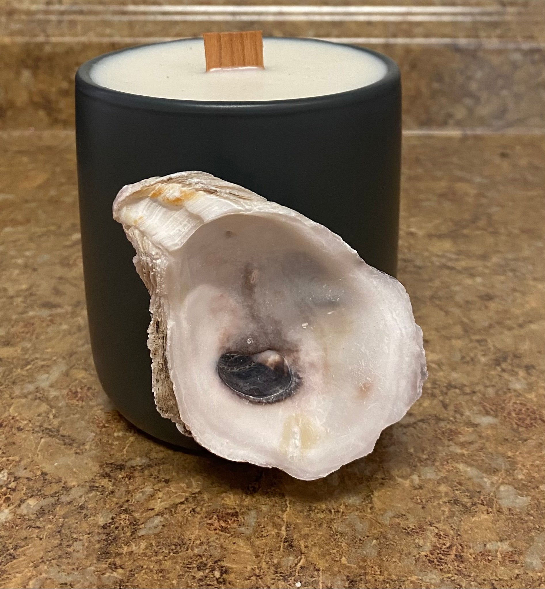 Gray Wood Wick Ceramic Candle with Oyster Shell