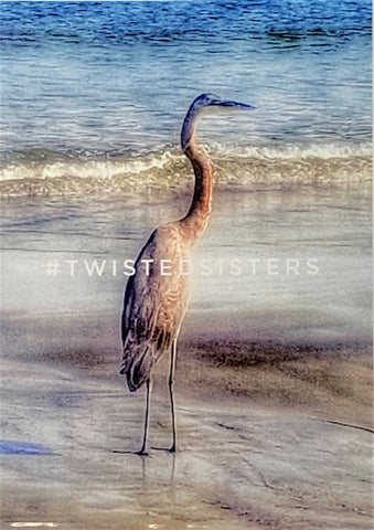 """Big Bird on Tybee Beach"" Magnetic-Sleeved Photographic Print by Twisted Sisters"