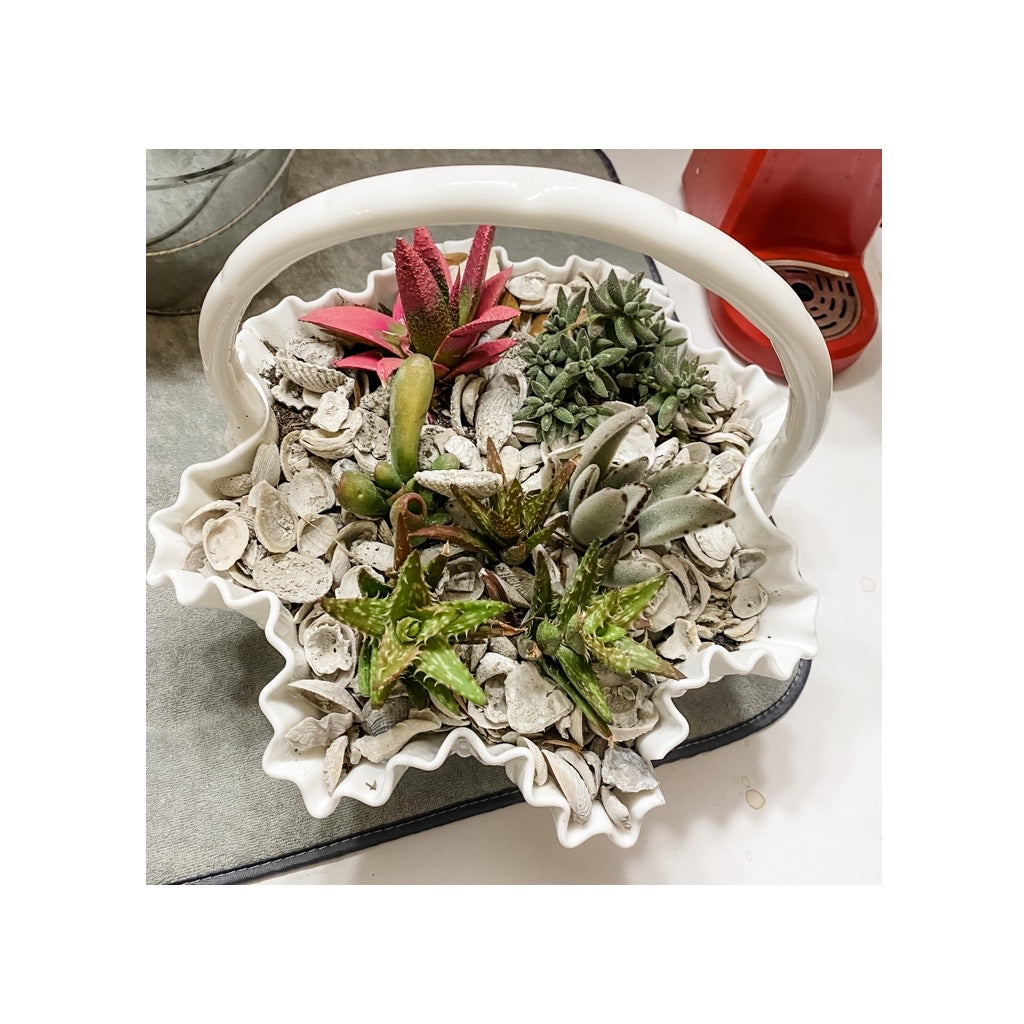 Vintage Milk Glass Basket with Succulent