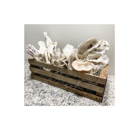 Oyster Shells in Collectable Crate by Dianne Klevinski
