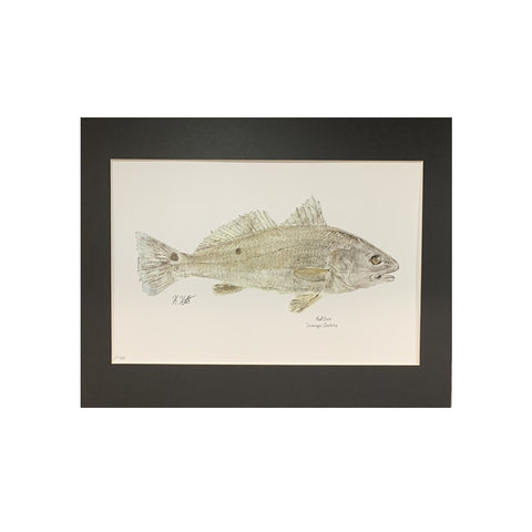 """Red Drum"" Gyotaku Print by Kaylee Hettenbaugh"