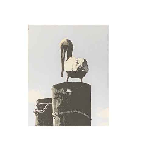 """Pelican Post"" Photographic Print by Twisted Sisters"