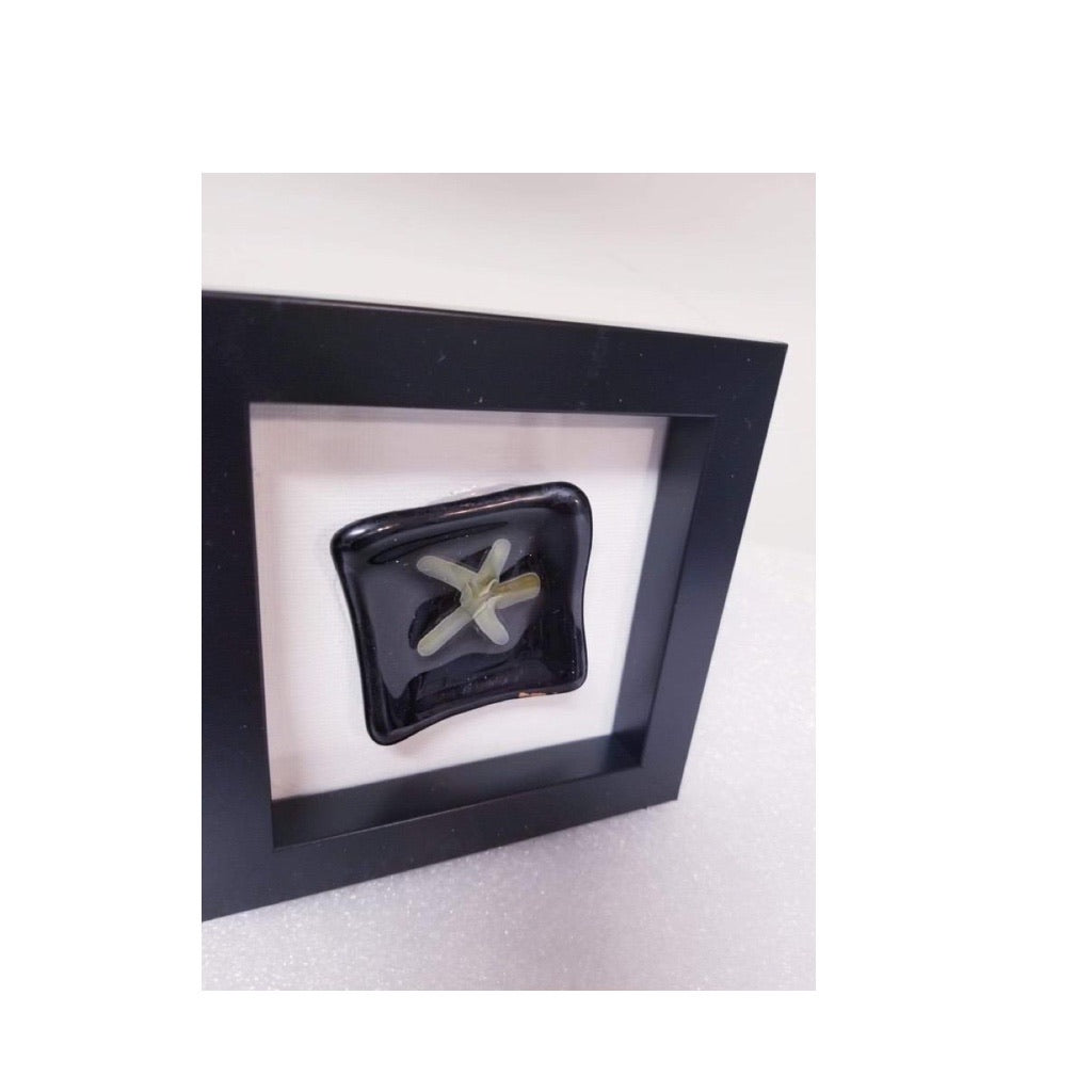 Framed Fused Glass 3D Abstract Star Fish