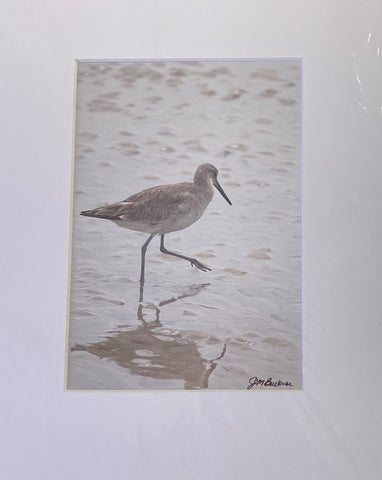 """Morning Jog"" Matted Photographic Print by Jill Buckner"