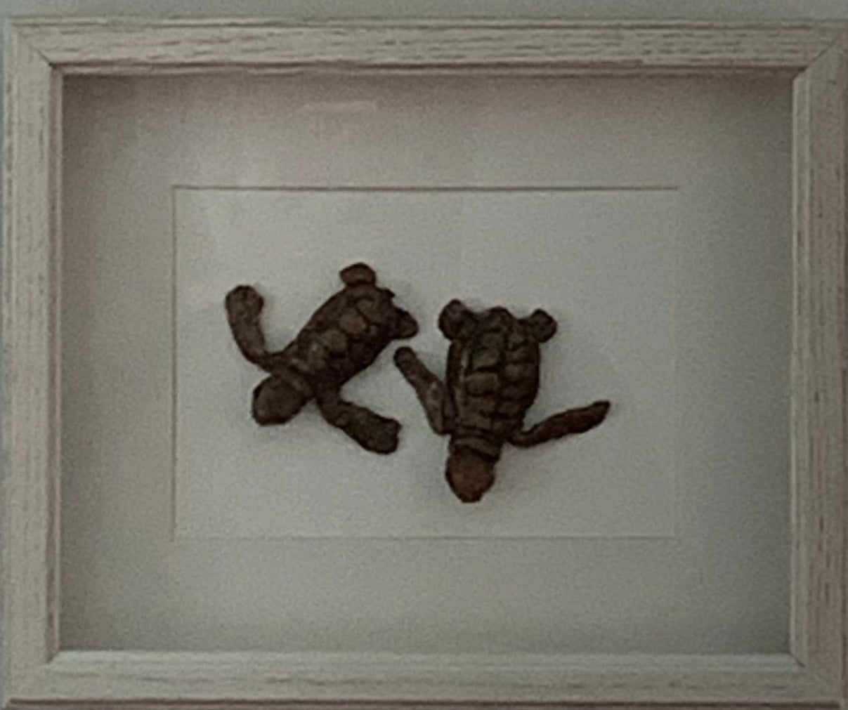 Shadowbox - Double Turtle by Rebecca Rice