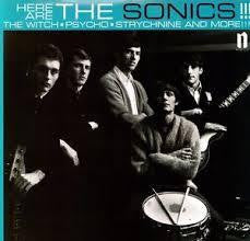 SONICS THE-HERE ARE THE SONICS !!! LP EX COVER NM