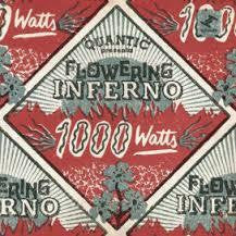 QUANTIC PRESENTA FLOWERING INFERNO-1000 WATTS CD *NEW*
