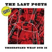 LAST POETS THE-UNDERSTAND WHAT DUB IS LP *NEW*""