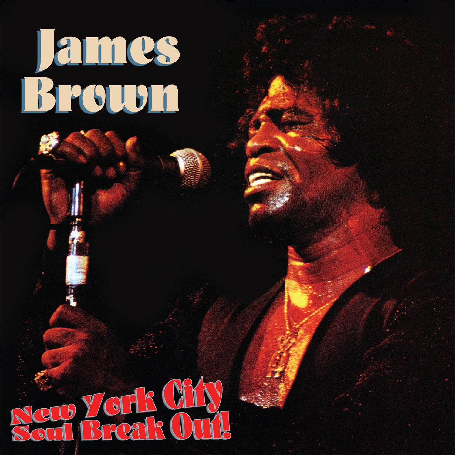 BROWN JAMES-NEW YORK CITY SOUL BREAK OUT LP *NEW*