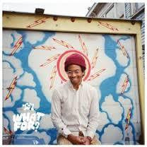 TORO Y MOI-WHAT FOR ? *NEW*
