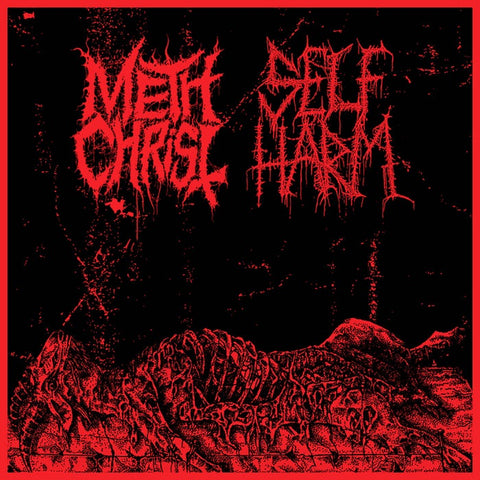 METHCHRIST / SELF HARM SPLIT CASSETTE *NEW*